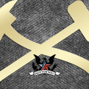damage controlman dc brass rating symbol logo coast guard navy
