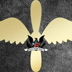 Solid Brass Aviation Maintenance Technician wings and propeller uscg rating symbol logo coast guard- brushed finish saltyforyou